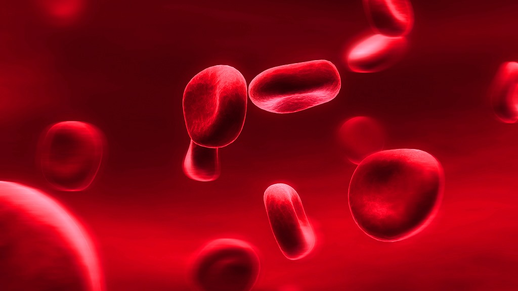 Hemophilia: Stopping the Bleeding