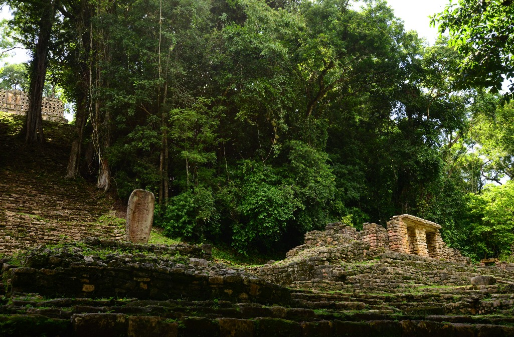 Archeological Research Resumes at Chiapas Maya Ruin