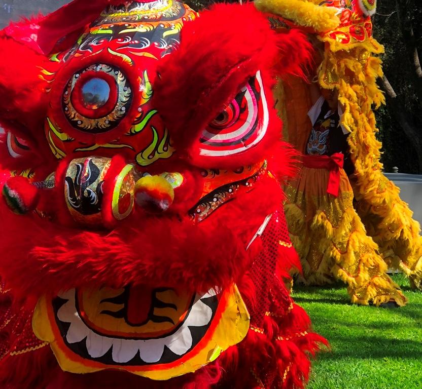 Chinese Ambassador Hosts Year of the PigCelebration