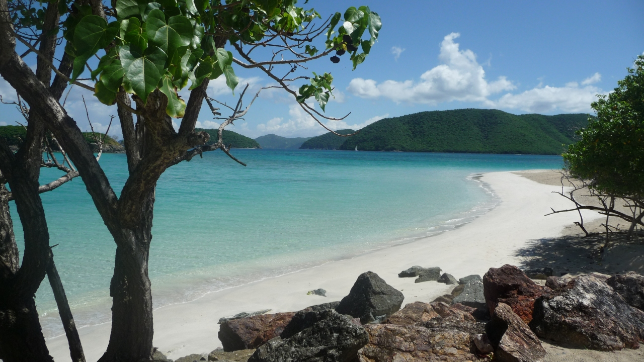 Far from the Madding Crowd: Tiny St. John's Very Big Beaches