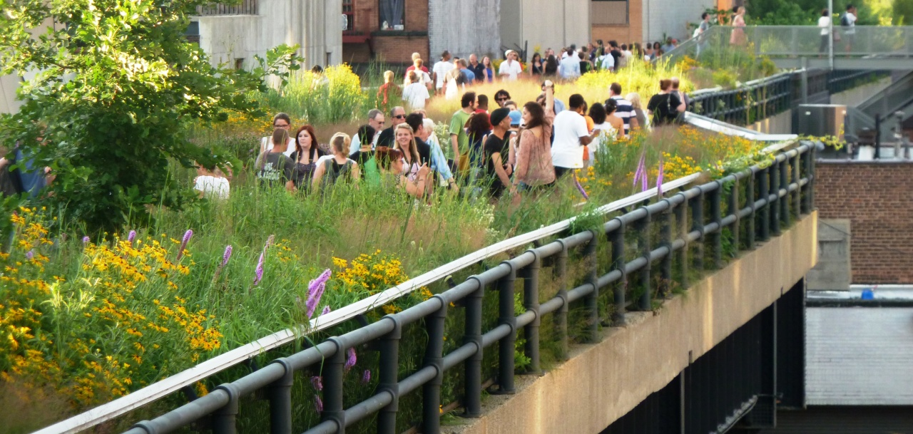 Taking the High Line In New York City