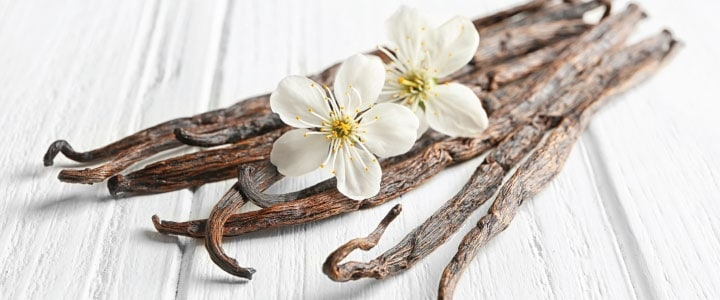 Mexican Vanilla Brand Looks for Sweet Spot in ChineseMarket